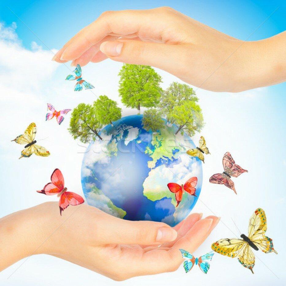 сбережем планету нашу картинки нарезать продукты заправлять