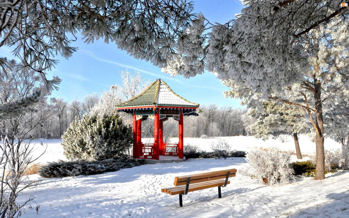 Картинки зимнего парка