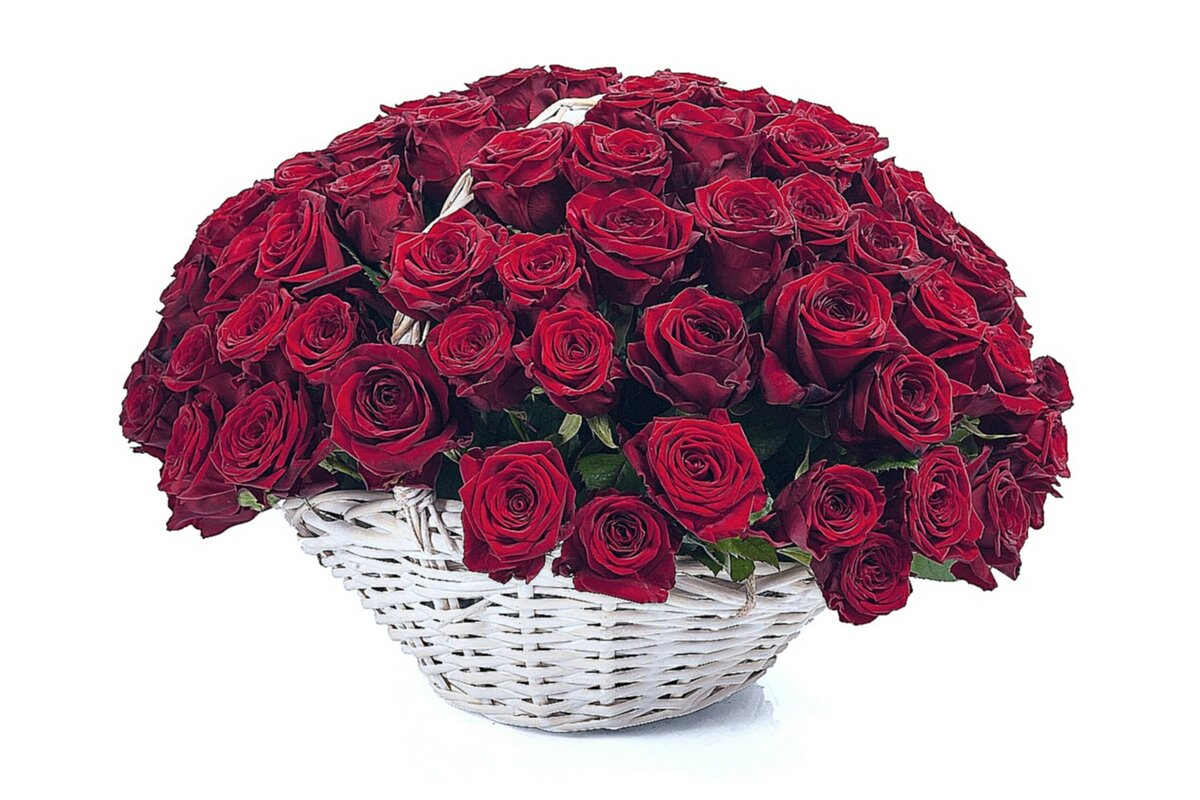 Цветы розы красивые букет красные фото