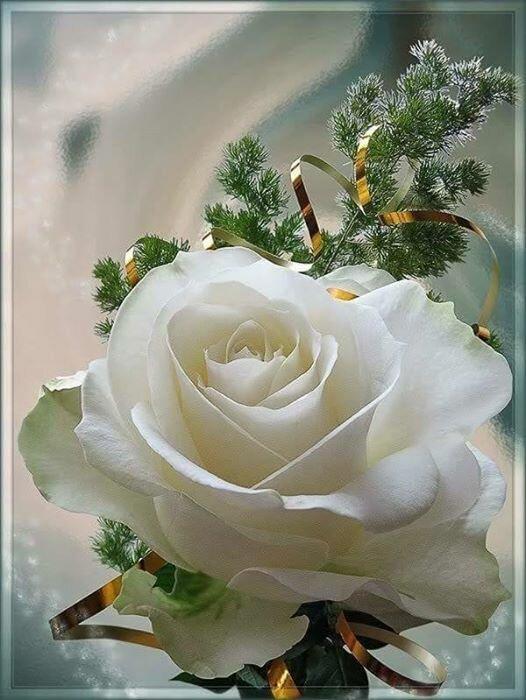 Открытки 80-летию, цветы татьяне картинки