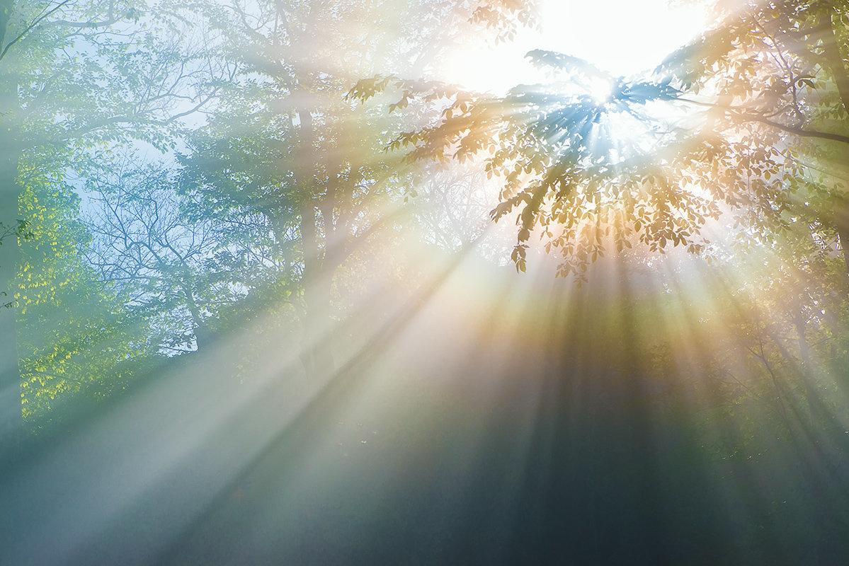 Картинки с лучами солнца