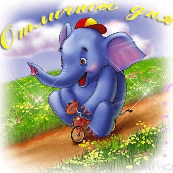 День слона открытка, открытки