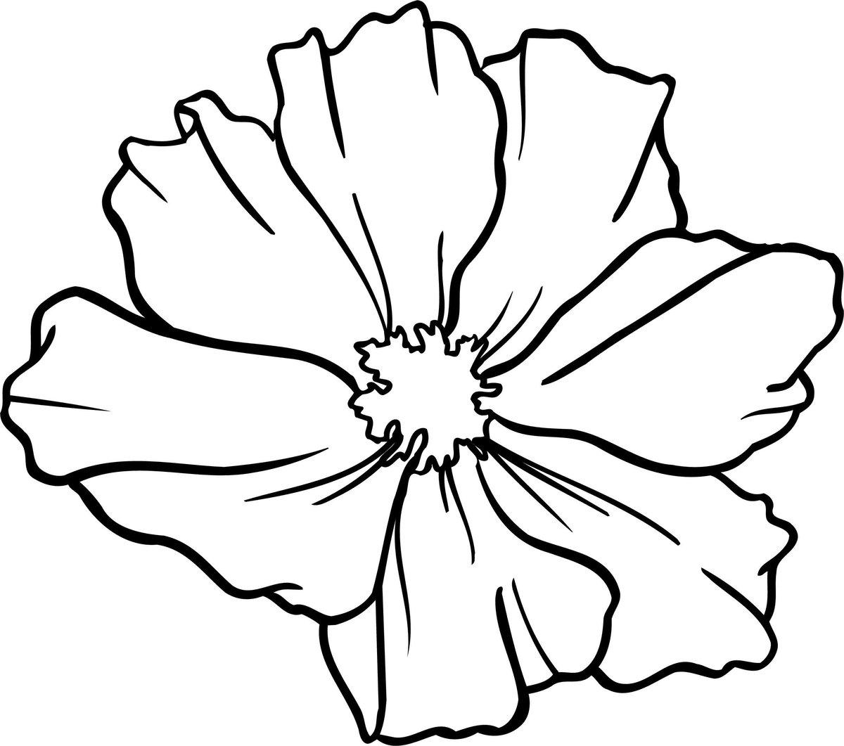 Картинки контурный цветок