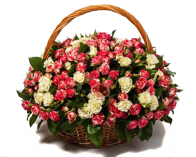 фото красивых букетов роз в корзинах объявления продаже