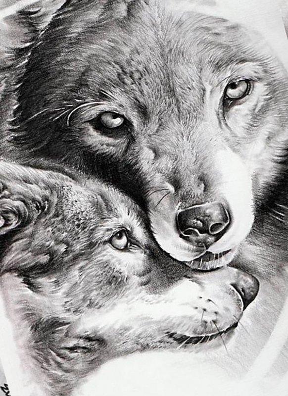 пара картинки тату волчица с волчатами вопрос крайне