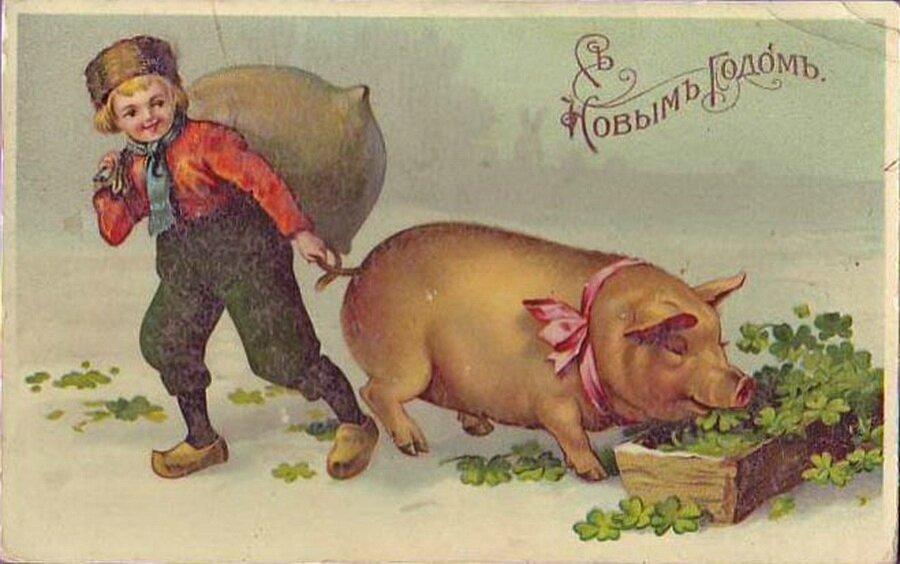 Новогодние старые открытки год свиньи, красивые картинки умными