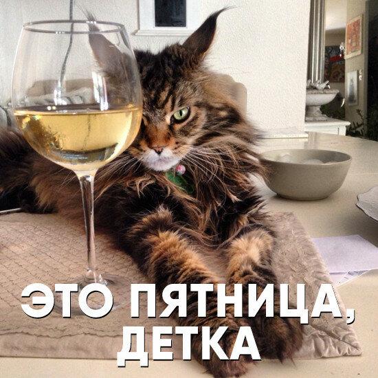 Домодедово, смешные картинки пятница закончилась
