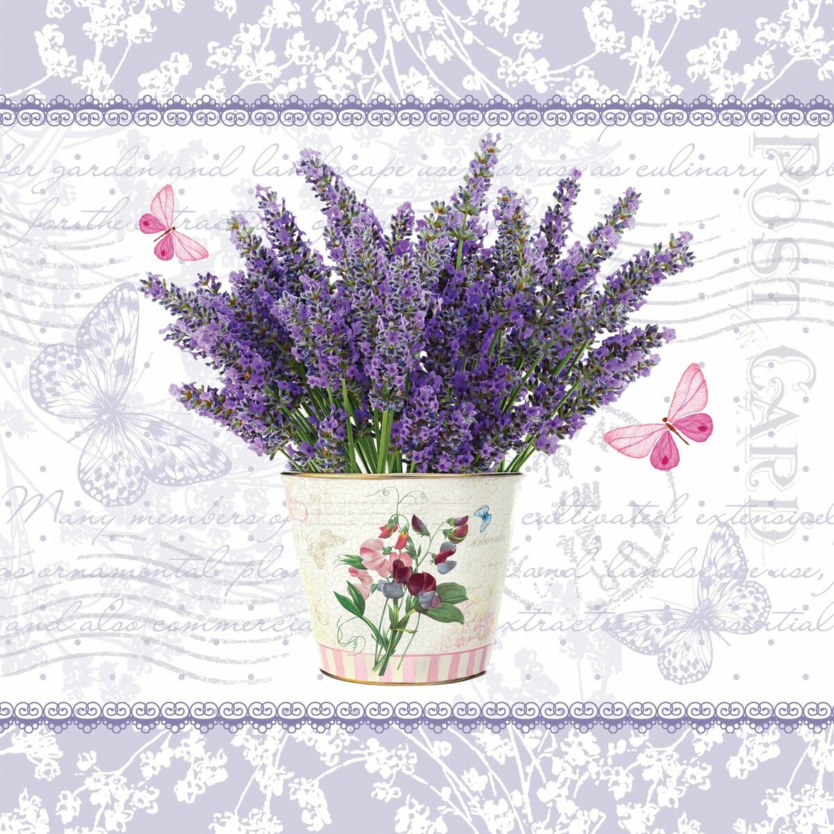 Картинки словом, открытка с днем рождения лаванда картинки