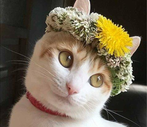 Красивая я?)))
