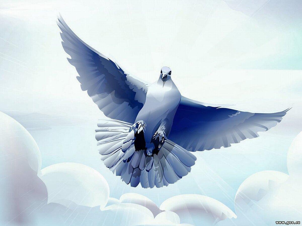 Под, а открытки с голубками все летят ко мне из детства текст
