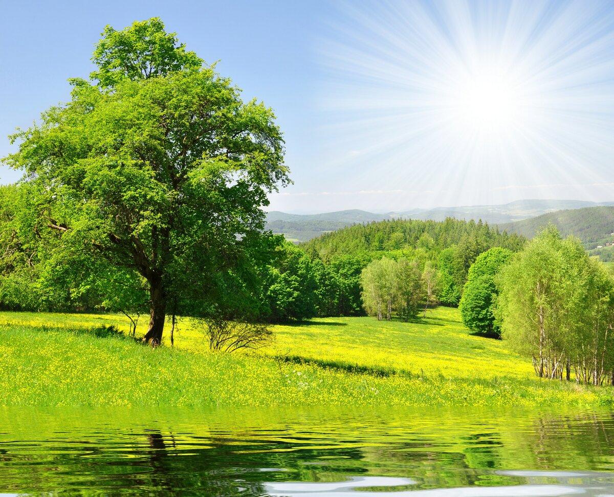 Для, картинки красивые летние пейзажи