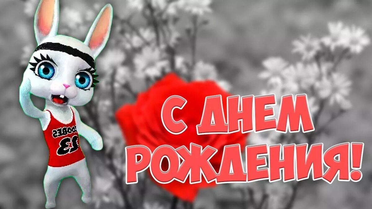 С днем рождения картинки зайка видео