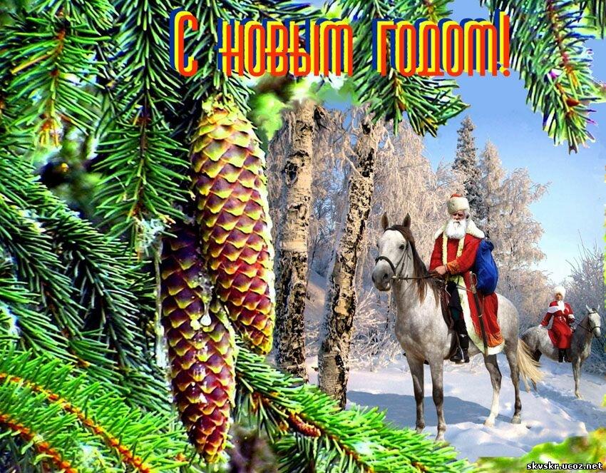 Фото, открытка казачья с новым годом
