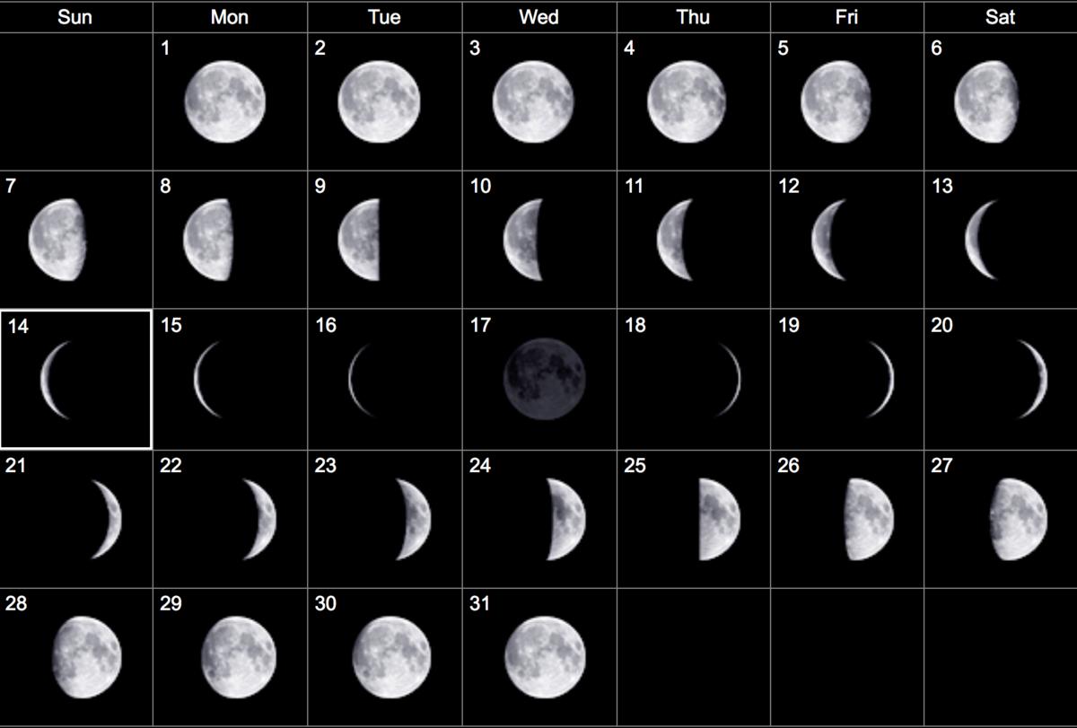 боня фазы луны по дням картинка свое