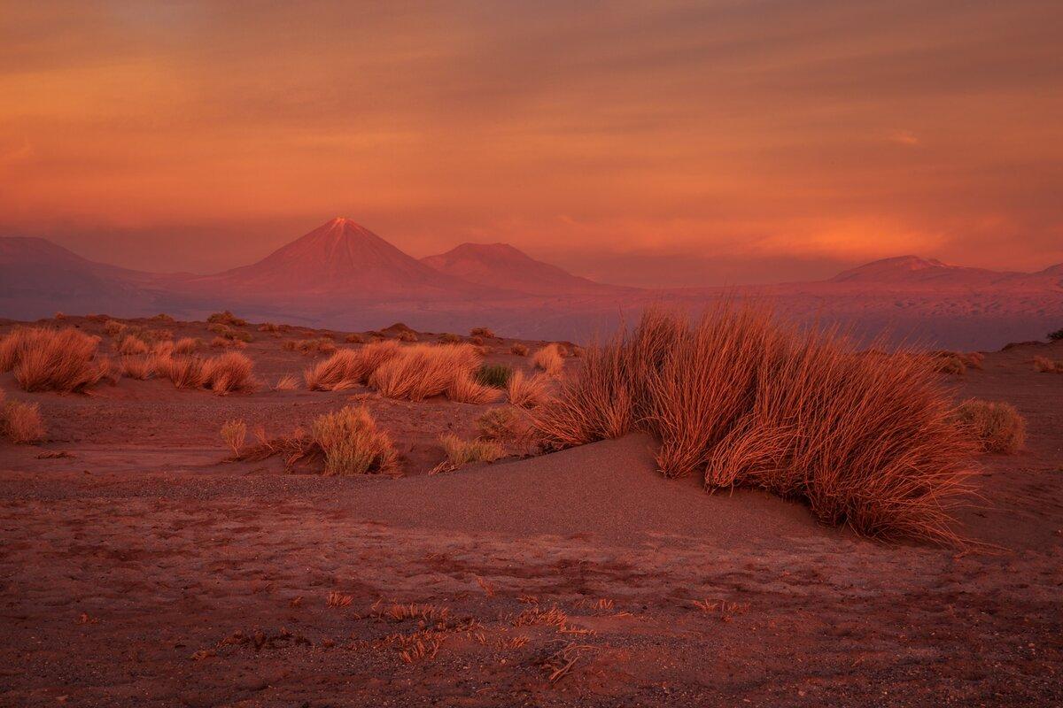 картинки пустыня рассвет буду