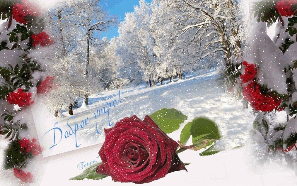 Найти открытку зимнюю с добрым