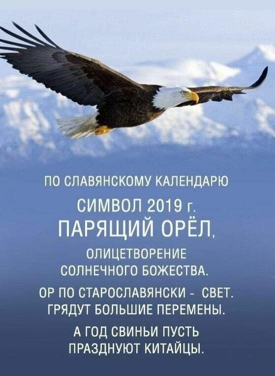 поздравление с орел данной модели