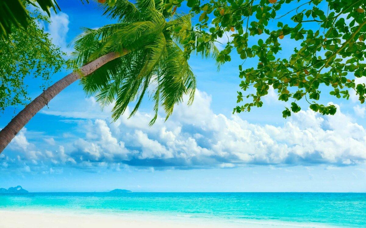 Пригласительные, лето пляж картинки