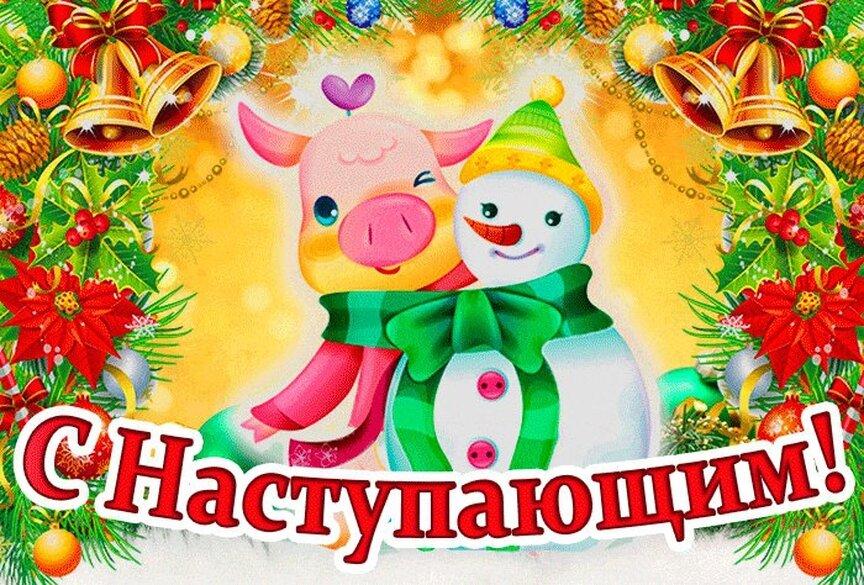 Открытки поздравления с наступившим новым годом 2019 свиньи, фон для открыток