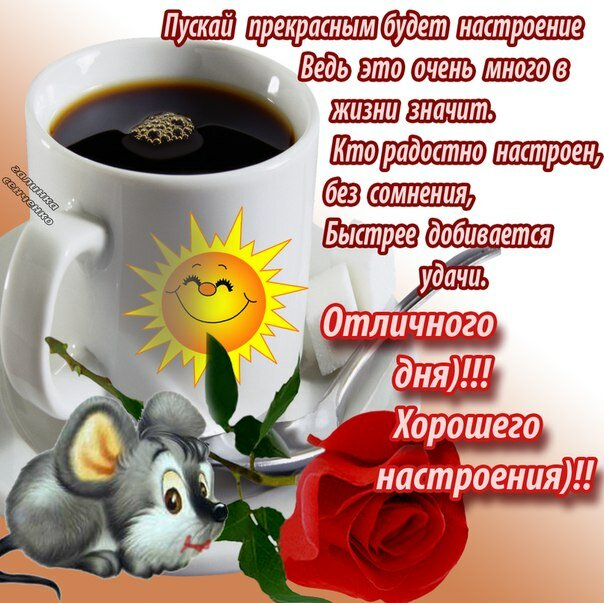 картинки с пожеланием доброго утра хорошего дня и отличного настроения идеал брать первый