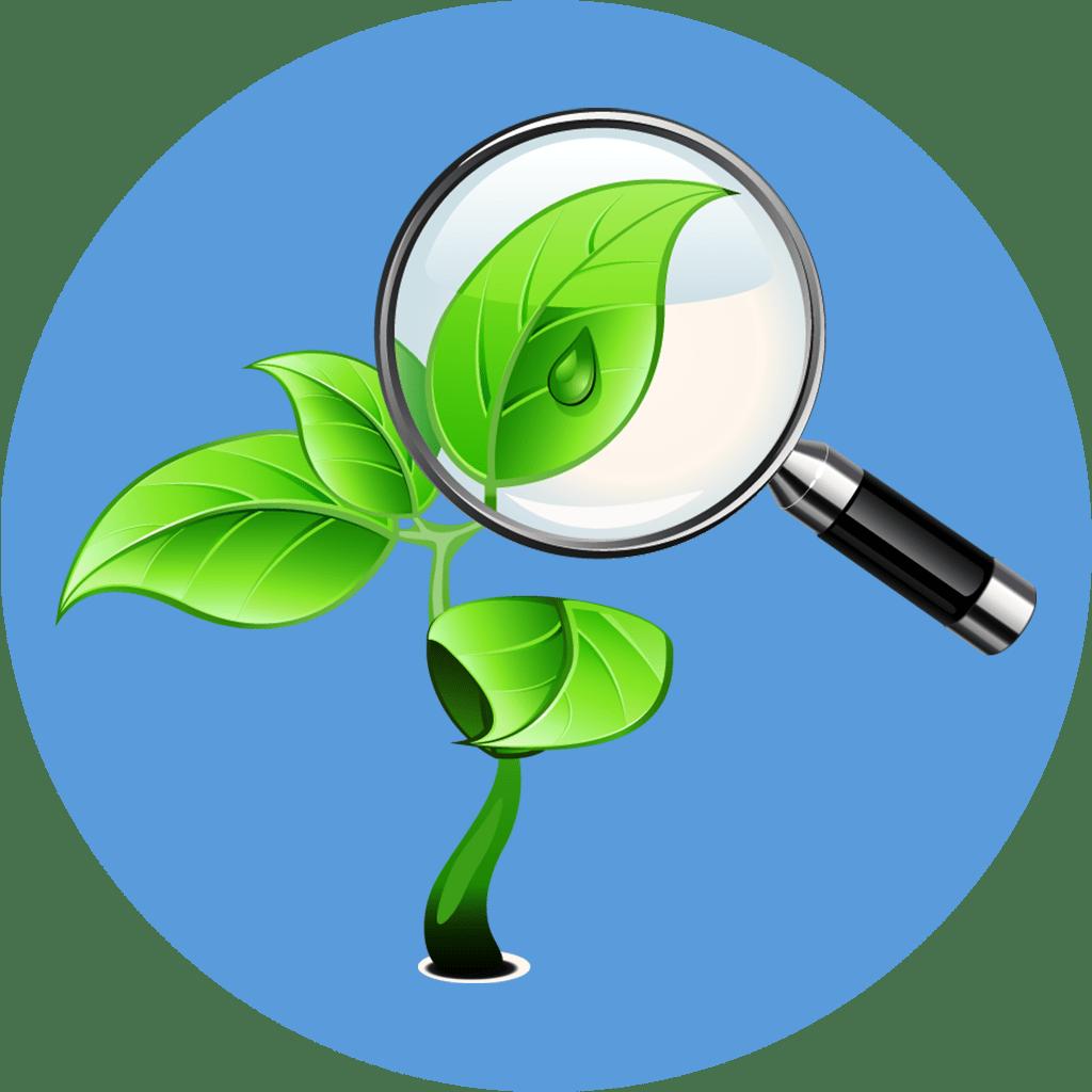 Экологическая экспертиза картинки