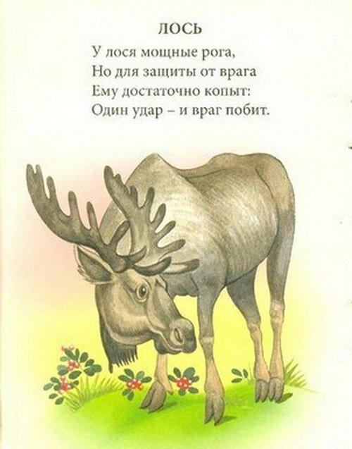 Стихотворение про лося для 2 класса