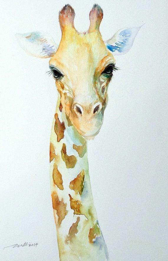 Картинки с жирафами рисованные, поздравление картинки подруге