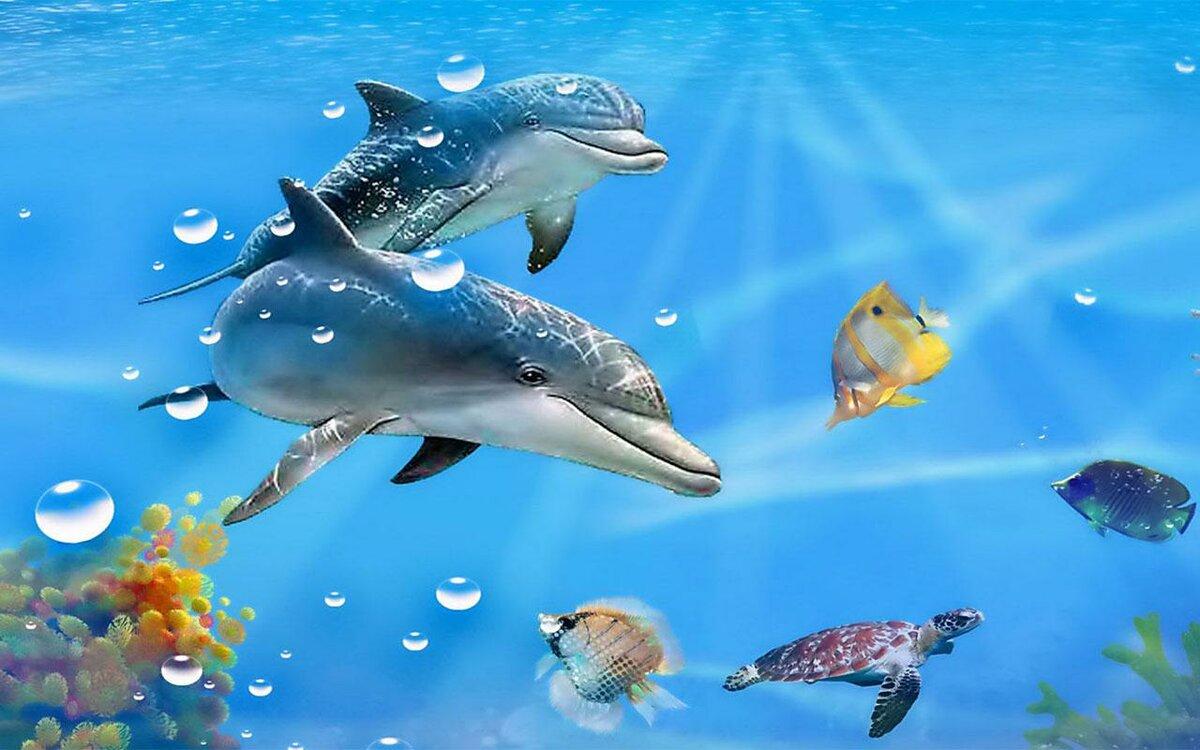 главное картинки дельфинов на весь экран кино она