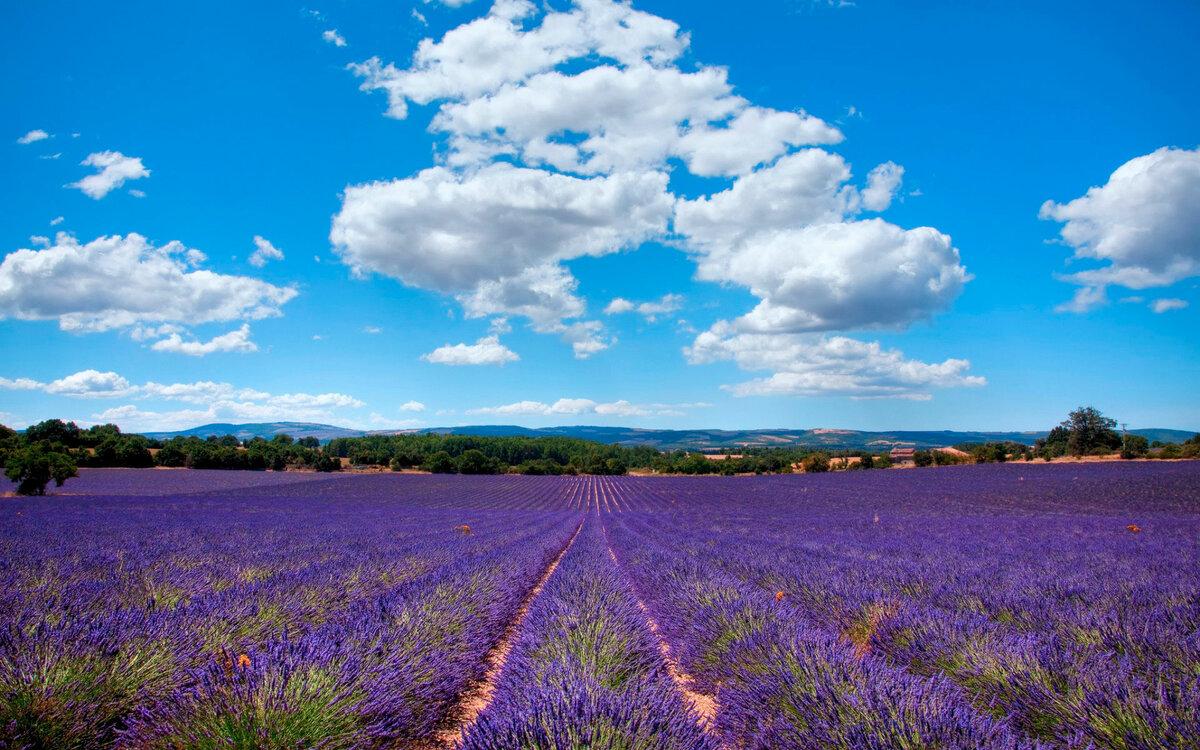 Природа франции картинка