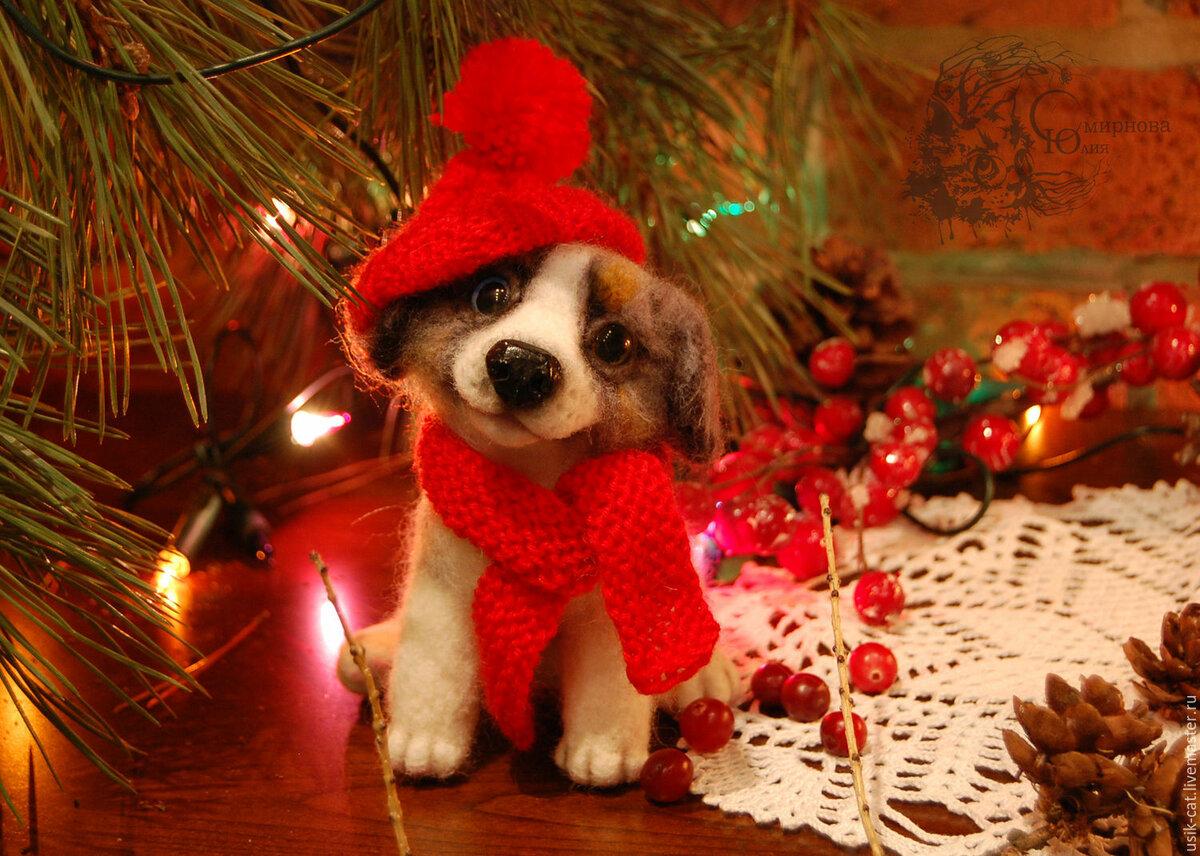 Поздравлениями марта, новогодние картинки с собаками