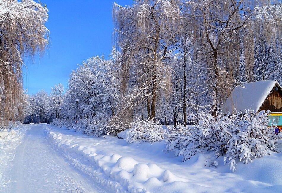 Открытки природа зимой