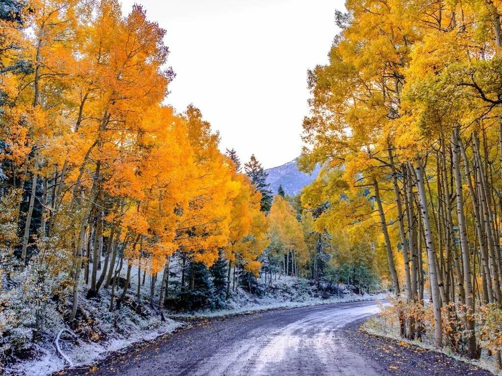 Красивые картинки осени зимы