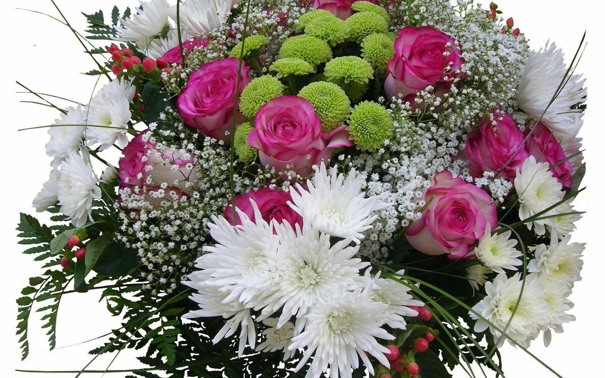 картинки роз хризантем смущало, что