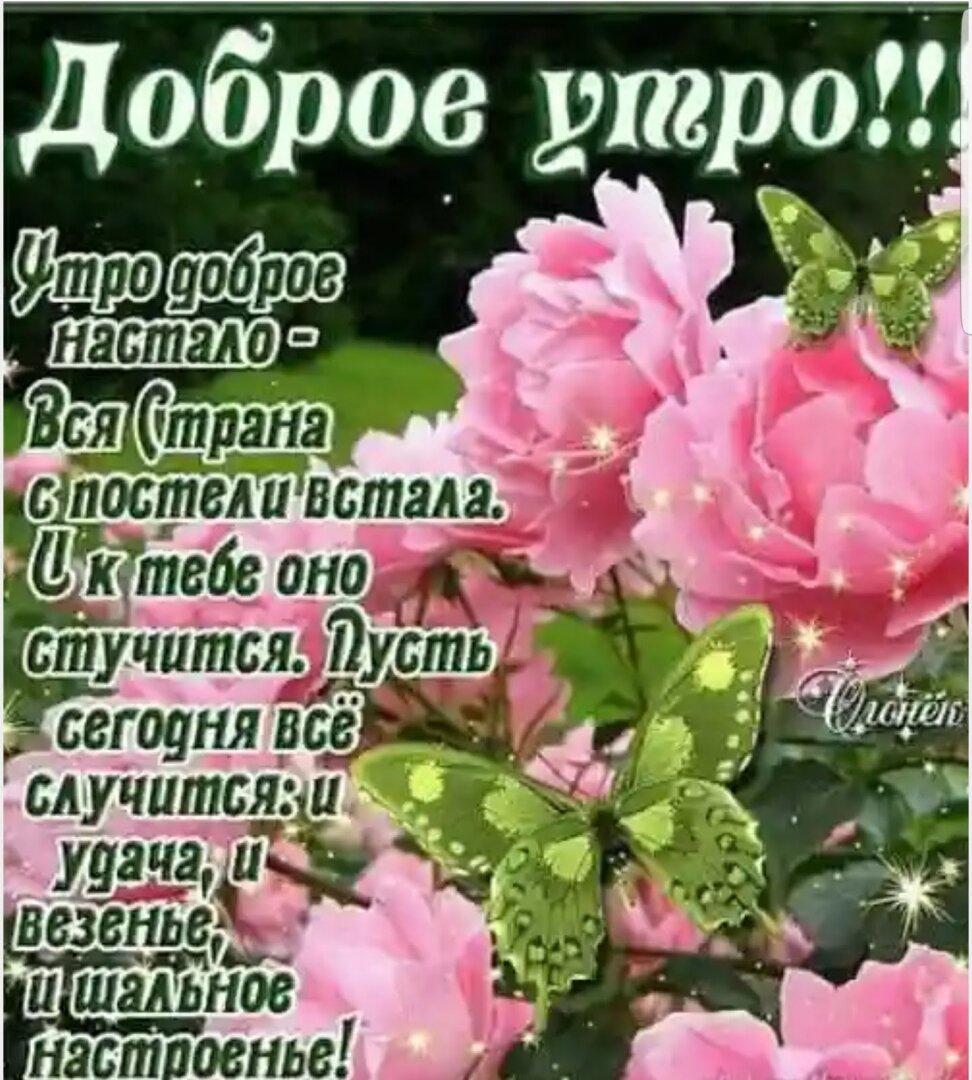 Красивые открытки с добрым утром с цветами и пожеланиями
