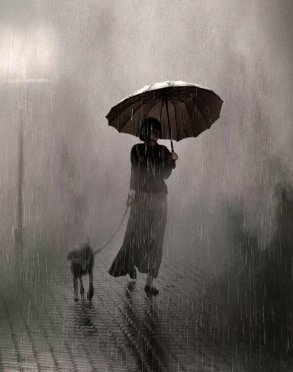 Картинка человек под зонтом