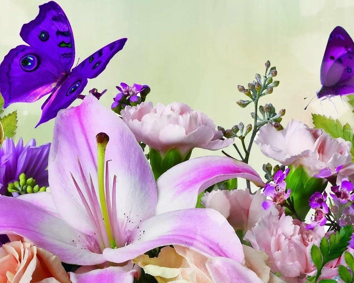 Поинт, открытки бабочки цветы