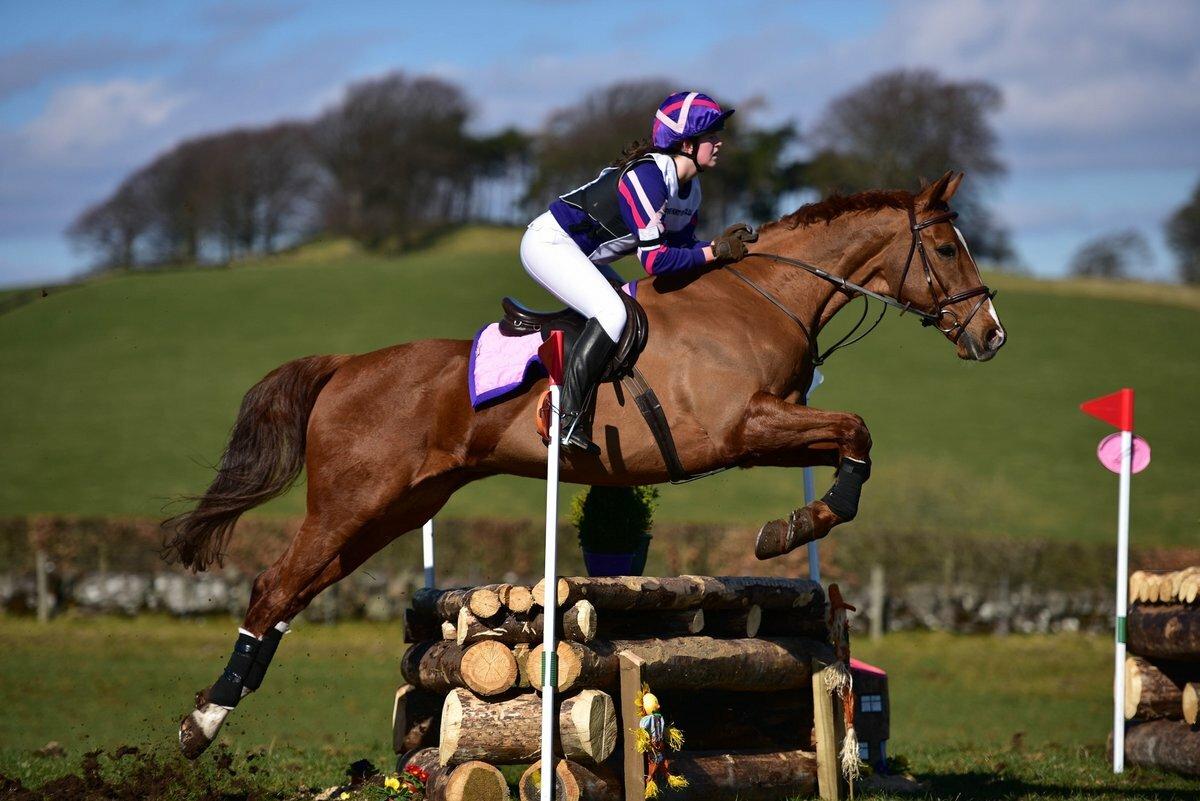 лошадь в прыжке картинка сделанные своими руками