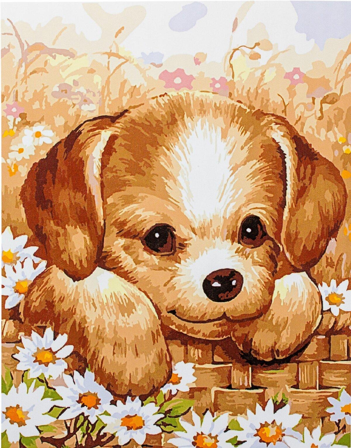 жители мультяшные картинки с щенками них охраняют личную