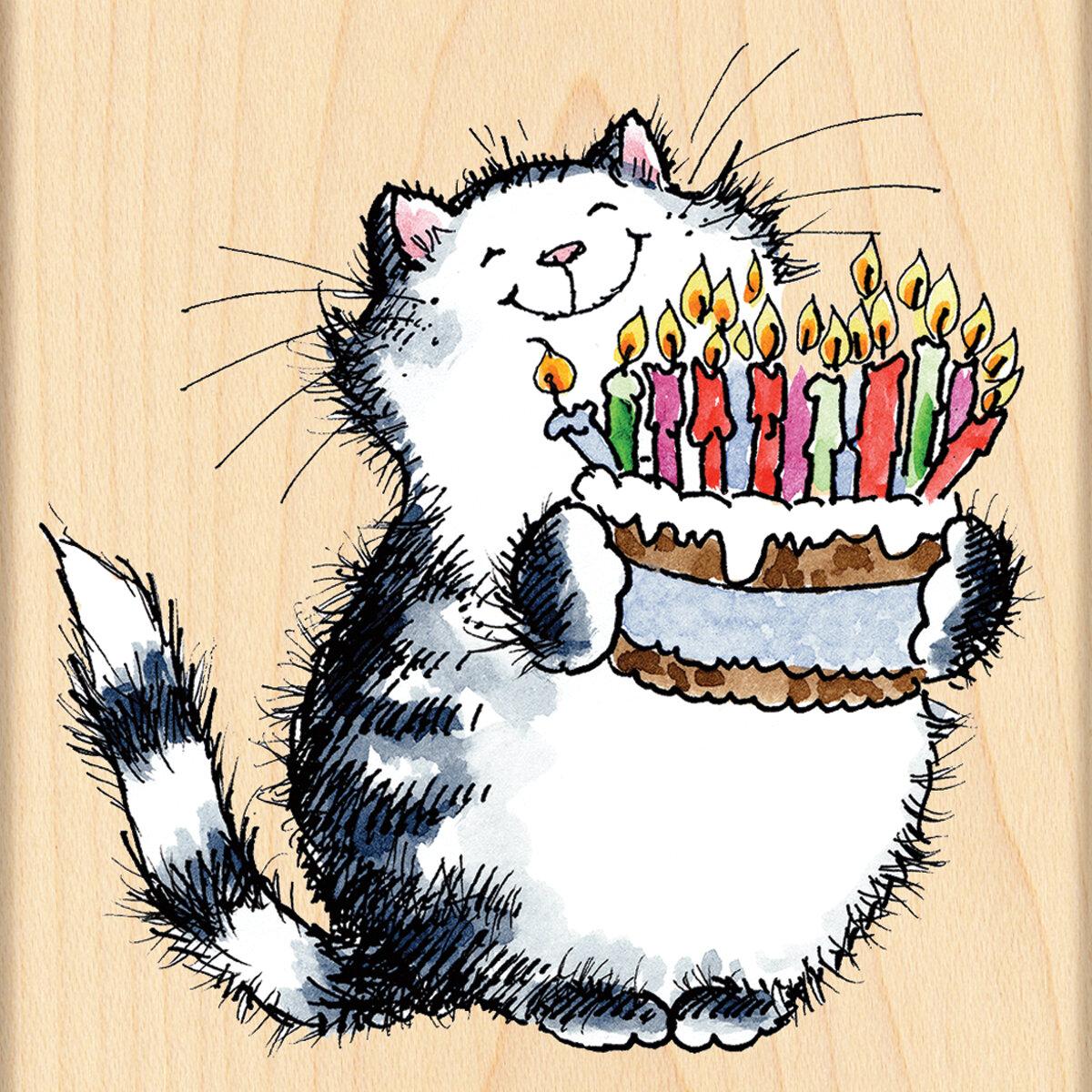 Открытка с днем рождения оригинальная с котом, смешные картинки про