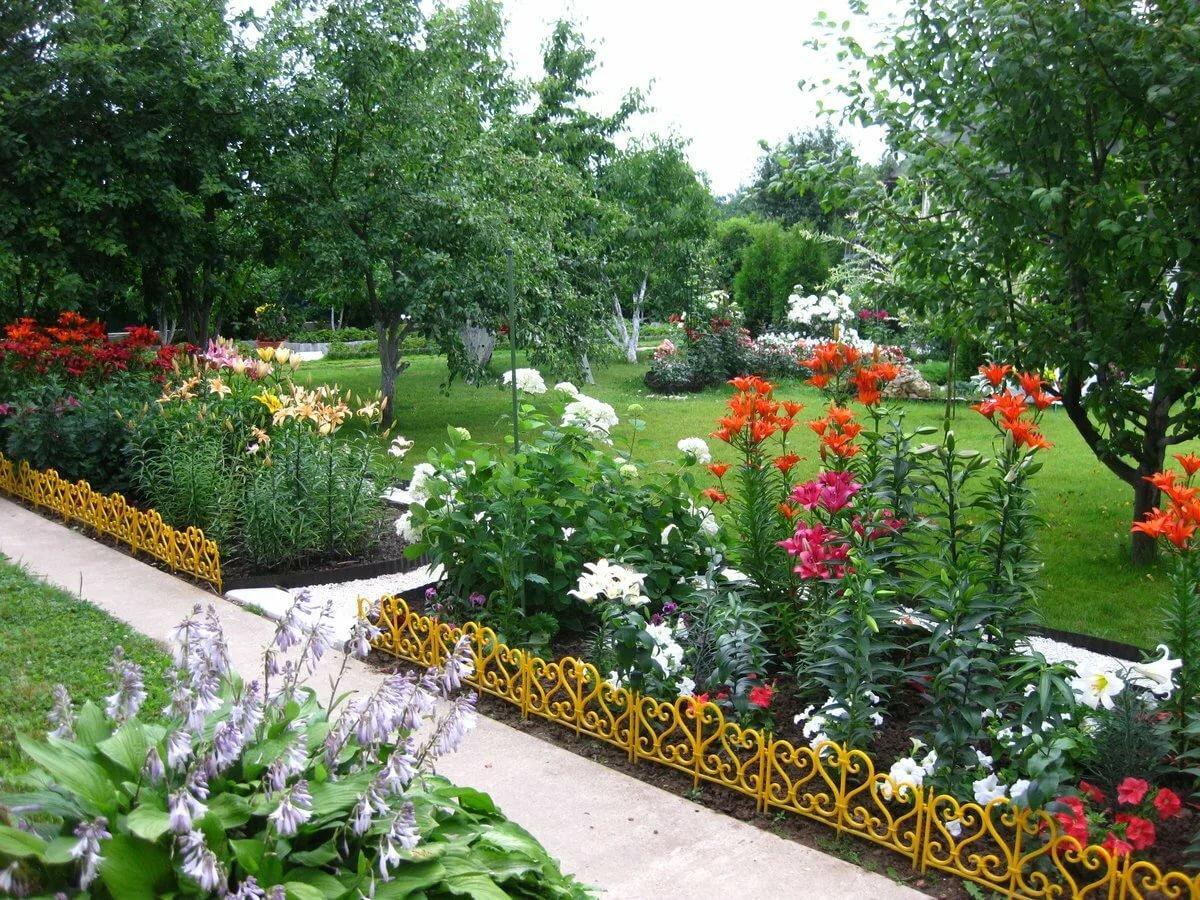 Лилии в саду оформление клумбы