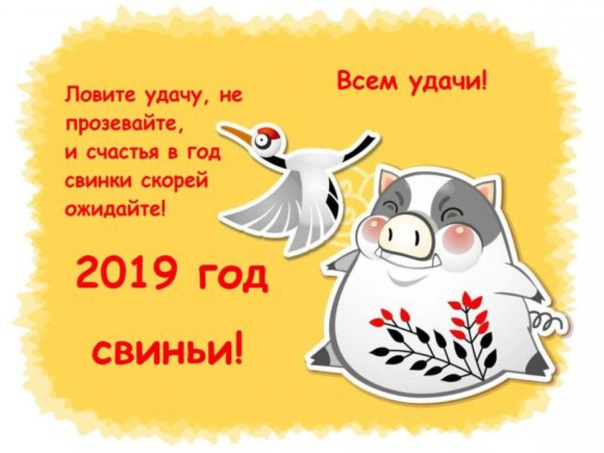 Прикольные картинки скоро новый год и свинья