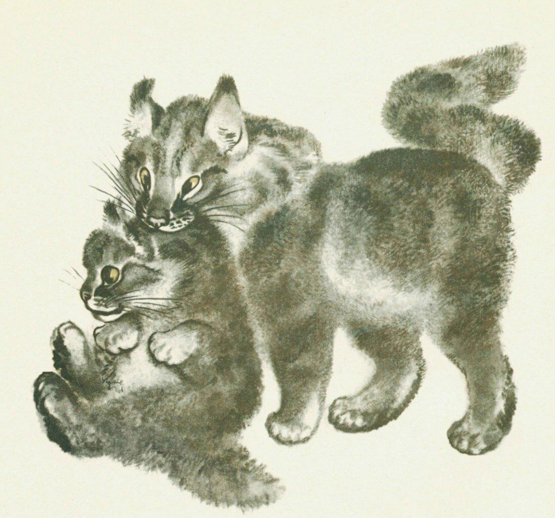 Чарушин картинки к рассказам о животных, нацу