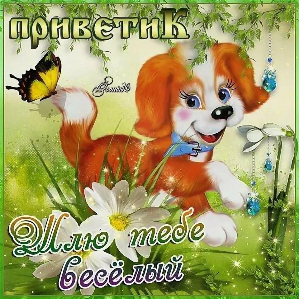 Кролика открытка, открытка доброе утро дети мои