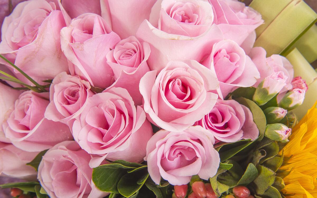 Розовые розы картинка с днем рождения, целую картинки надписями