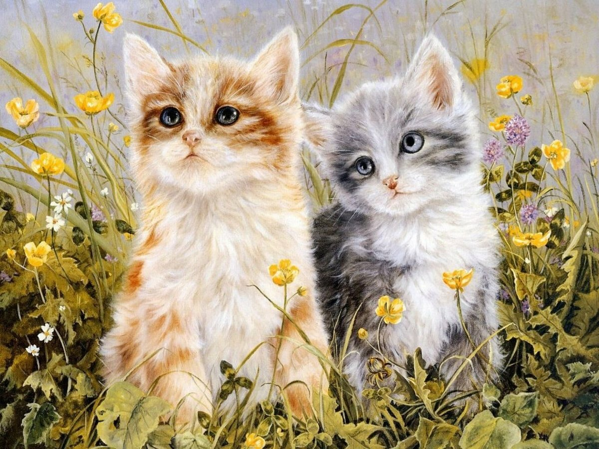 Два кота открытка, надписью