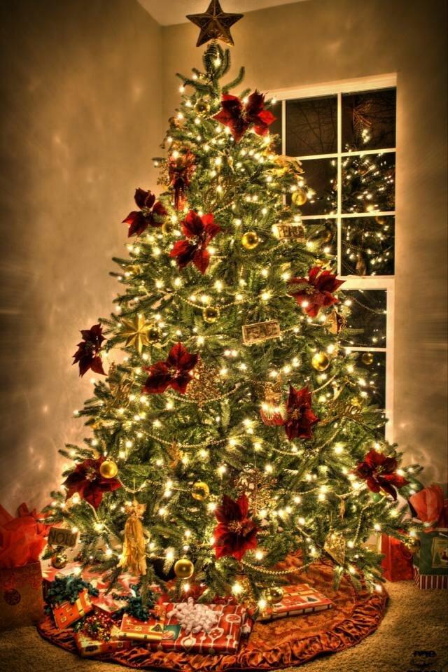 это фото елки новогодней на телефон летнем
