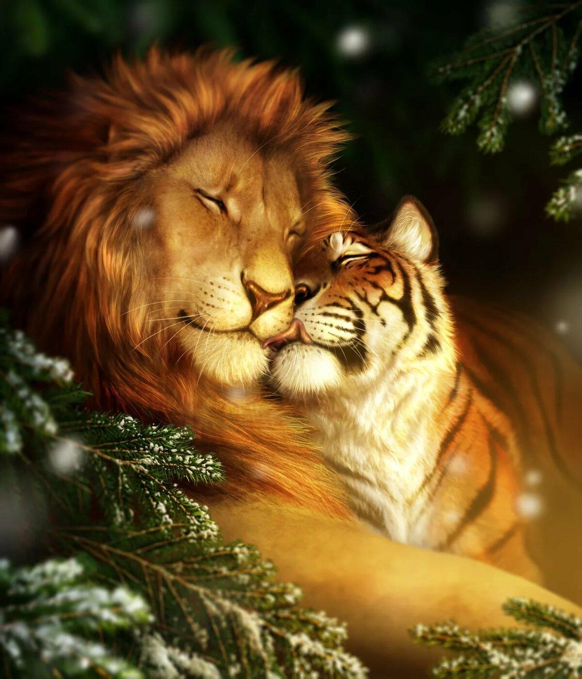Картинки животных львы тигры