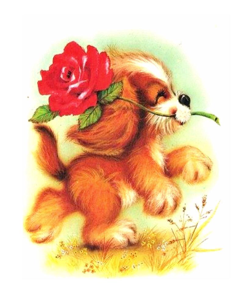Открытки поздравление, открытка собачка с цветком