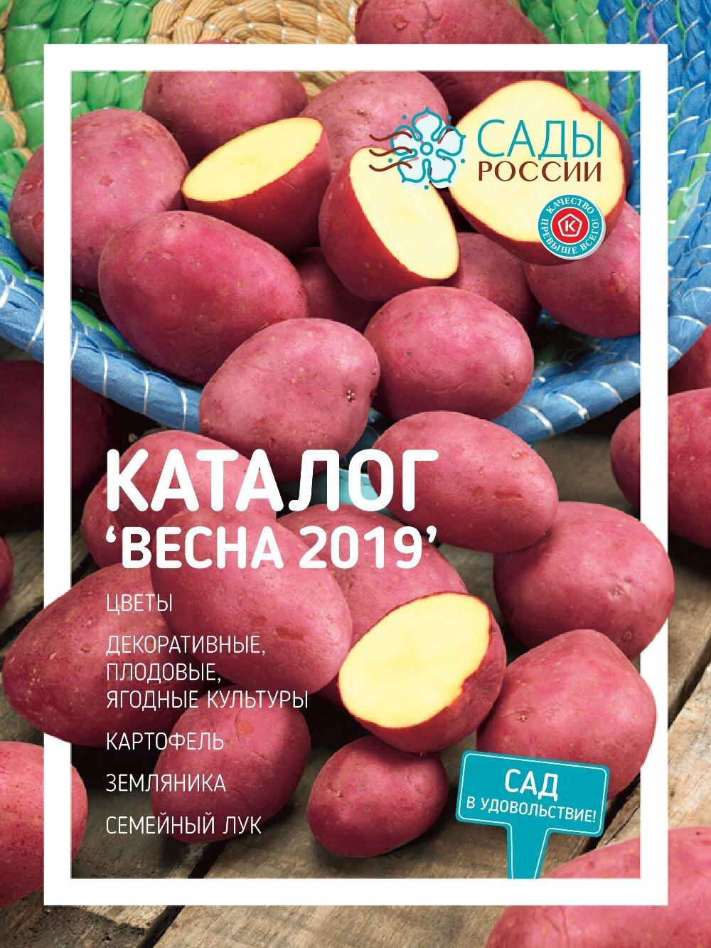 этом цветы россии челябинск каталог официальный сайт всегда стараюсь