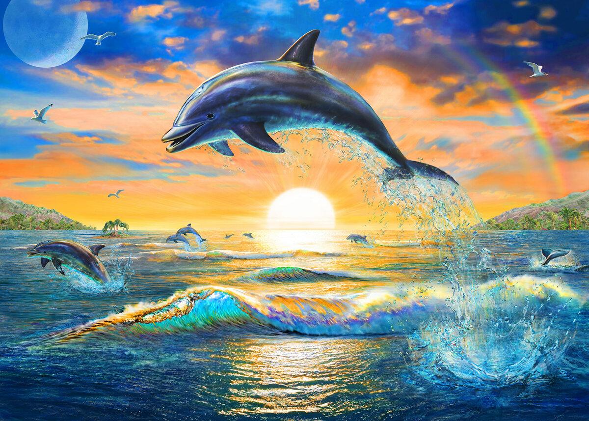 картинки дельфины море солнце разновидность холодного оружия